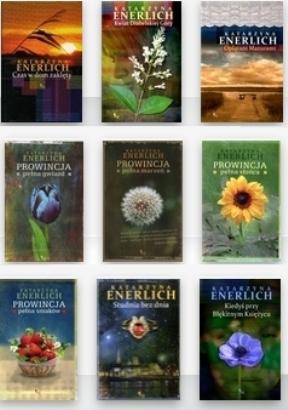 O książkach Katarzyny Enerlich z członkiniami DKK dla dorosłych